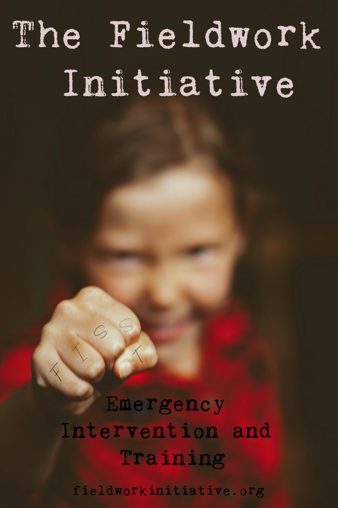 The Fieldwork Initiative - Emergency Intervention and Training